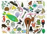 Charley Harper's Animal Kingdom, Todd Oldham, 1934429430