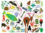 Charley Harper's Animal Kingdom