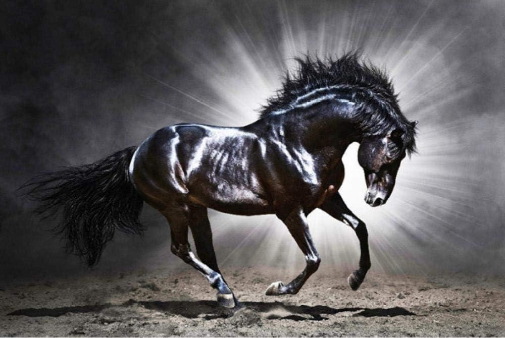 Animales famosos cuadros brillantes caballos negros y animales paisaje diy pintura al óleo digital Decoración de la boda Decoración del dormitorio Pintura de la lona pintura al óleo 40 * 50 cm