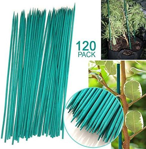 30 cm) jardín suave verde flores Stick Split bambú caña de apoyo – Soporte para plantas jóvenes de jardín jardinería guardería accesorio (120): Amazon.es: Jardín