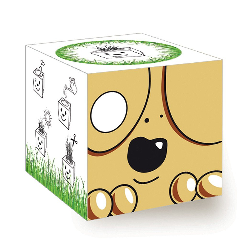 Funny Grass Cube - Hund Inventive Trading