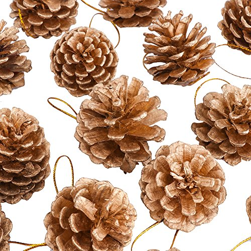 Yarssir 27Pieces Gold Tipped Real Natural Dried Pine Cones Hand Painted Premium Quality 1519 inchChristmas Decorations Centerpieces Bowl FillerDisplays Crafting Holiday Decor