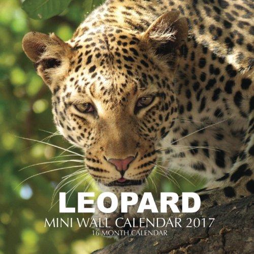 16 Leopard - 6