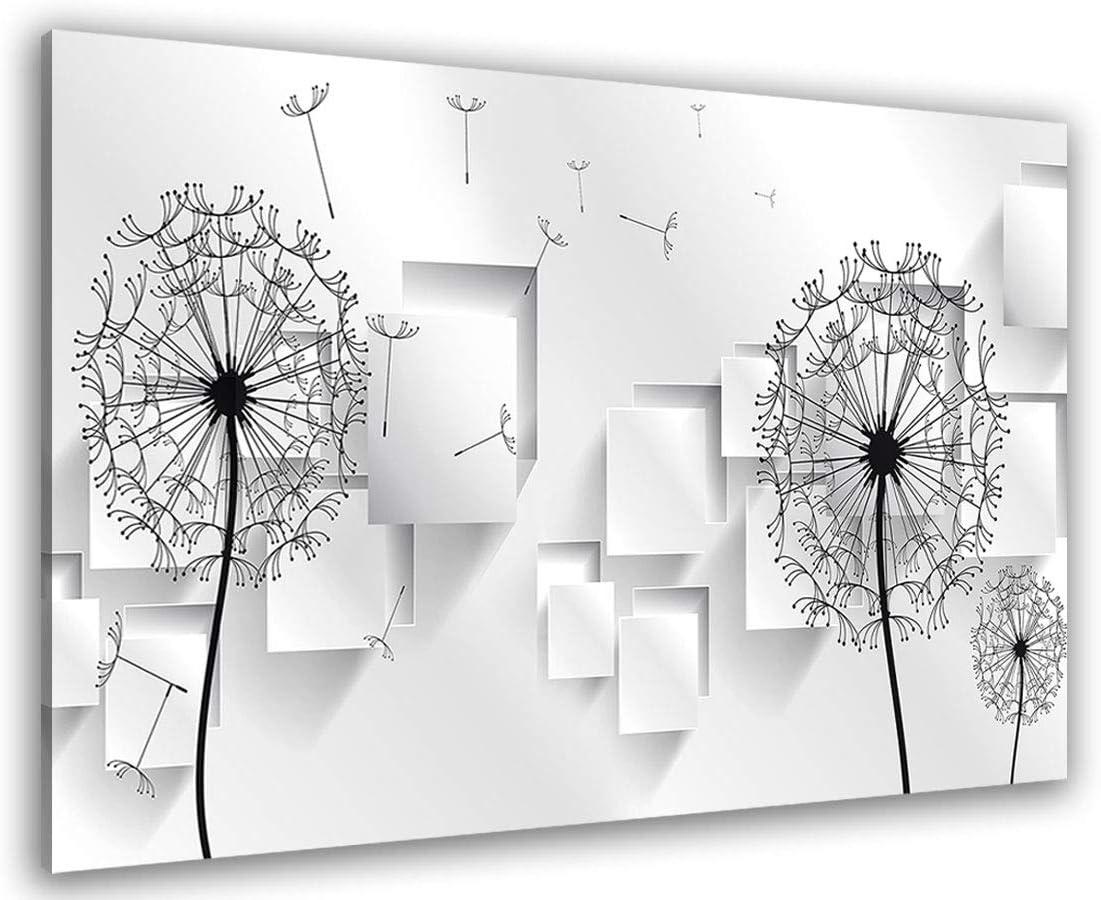 Tableau Graphique Pissenlits Graphiques HXA DECO 80x50 cm D/écoration Murale Tableau Moderne Impression sur Toile