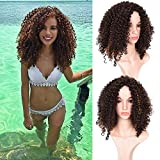 Top Afro Short Curly Hair Wig For Black Women Synthetic Hair Ombre Brown Wig With a Free Cap