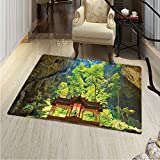 Natural Cave Anti-Skid Area Rug Latent Pavilion in Between the Cliffs Discovery of Faith in the Nature Picture Soft Area Rugs 48''x60'' Multicolor