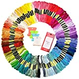 Uoobeetryy Embroidery Floss 100 Skeins Rainbow Color Sewing Thread Cross Stitch Floss for Friendship Bracelets Floss