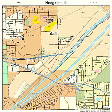 Hodgkin Illinois Map.Amazon Com Image Trader Large Street Road Map Of Hodgkins