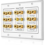 5 6 7.1/7.2 or 8.1/8.2 One or Two Subwoofer Compatible 16 Banana Post and 2 RCA Speaker Wall Plate for Home Theater…