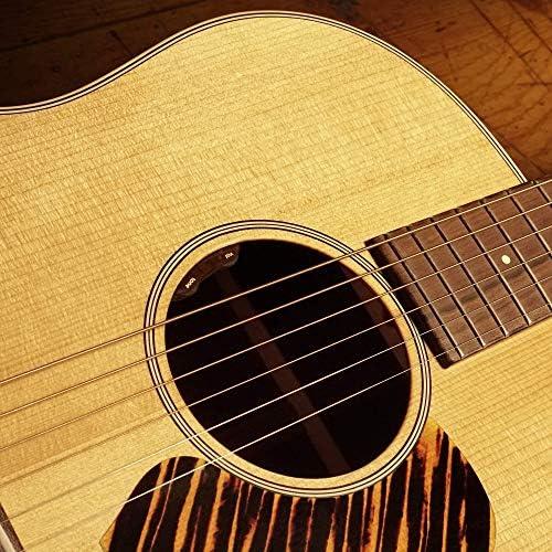 Acoustic guitar volume control _image1