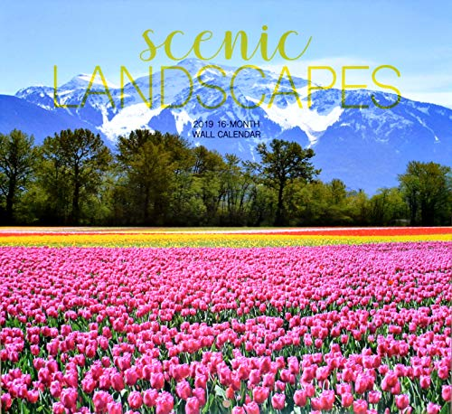Scenic Landscapes 2019 16-Month Wall Calendar (Waterfall Park)