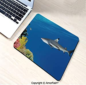 "Printed Base Mouse pad for Laptop,Computer & PC,Non-Slip Rubber,9.8""x11.8"",Shark,Tropical Underwater World with Fishes Swimming and Coral Reef Serene Wildlife Picture,Multicolor"