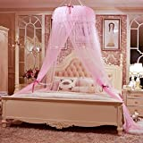 Court Fine Ceiling Mosquito Nets/Simplify Encryption,Mirror,Princess Dome Nets/Double Home,Fashion Landing Nets-A D