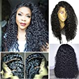 Dorosy Hair Lace Front Human Hair Wigs 150% Density Remy Hair with Natural Hairline for black women Curly hair with Baby Hair(14 inch with 150% density)