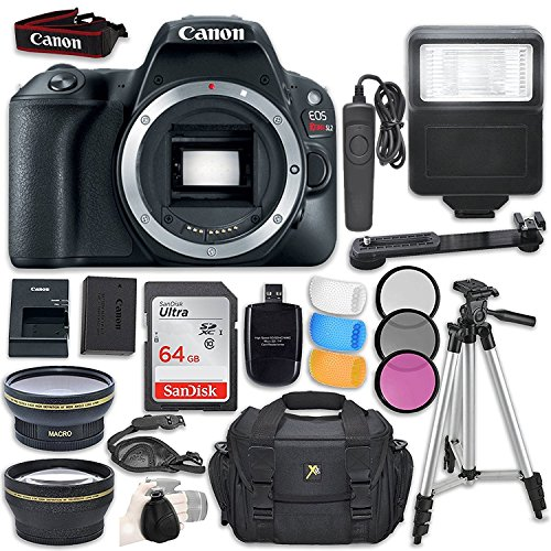 Canon EOS Rebel SL2 DSLR Camera (Body Only) + Accessory Bundle