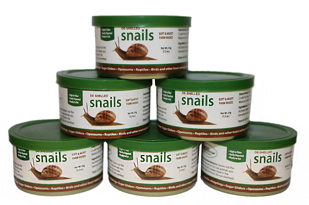 Canned Snails (1.2 oz. 6 Pack) - Healthy High Protein Insect Treat - Hedgehogs, Sugar Gliders, Reptiles, Wild Birds, Chickens, Lizards, Bearded Dragons, Skunks, Opossums, Fish, Amphibians, Turtles by Exotic Nutrition