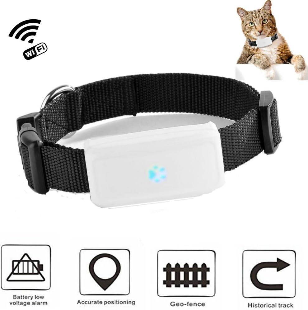tk911nuevo diseño de moda Wi-Fi GPS búsqueda de perros Mini actividad de entrenamiento al agua puesta en plaza en tiempo real