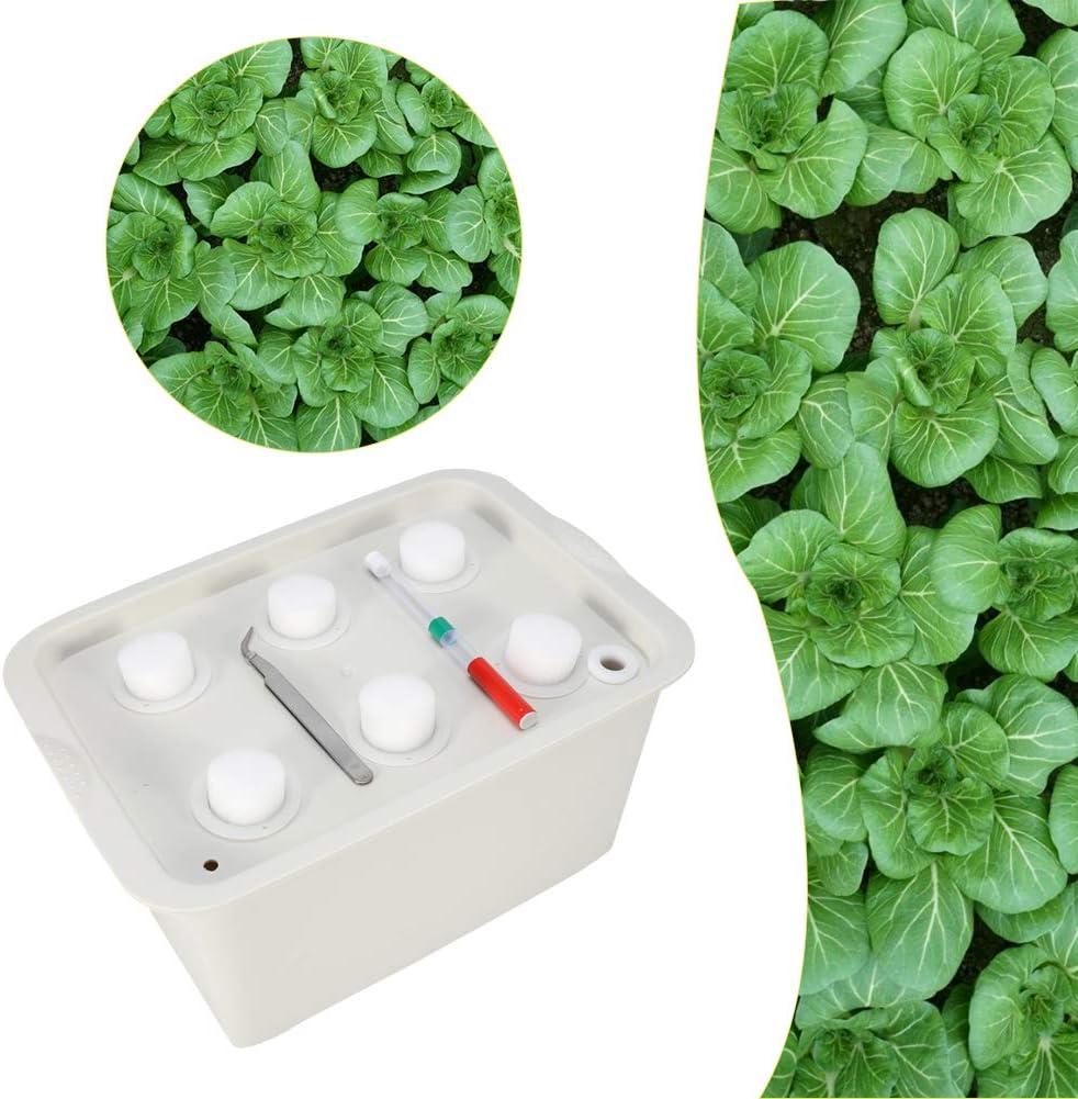 Verde Zerodis Scatola Sistema idroponica per Piante Contenitore da 6 buche Contenitore per Piante da Coltivazione Kit per Piante da Giardino Bubble Garden Vivaio da Esterno