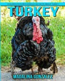 Turkey: Children Pictures Book & Fun Facts About Turkey