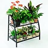 C-Hopetree Metal Plant Stand Pottted Plant Holder Indoor Outdoor Patio Flower Display Multi Purpose Tiered Storage Shelf Shoe Rack 2 Shelf
