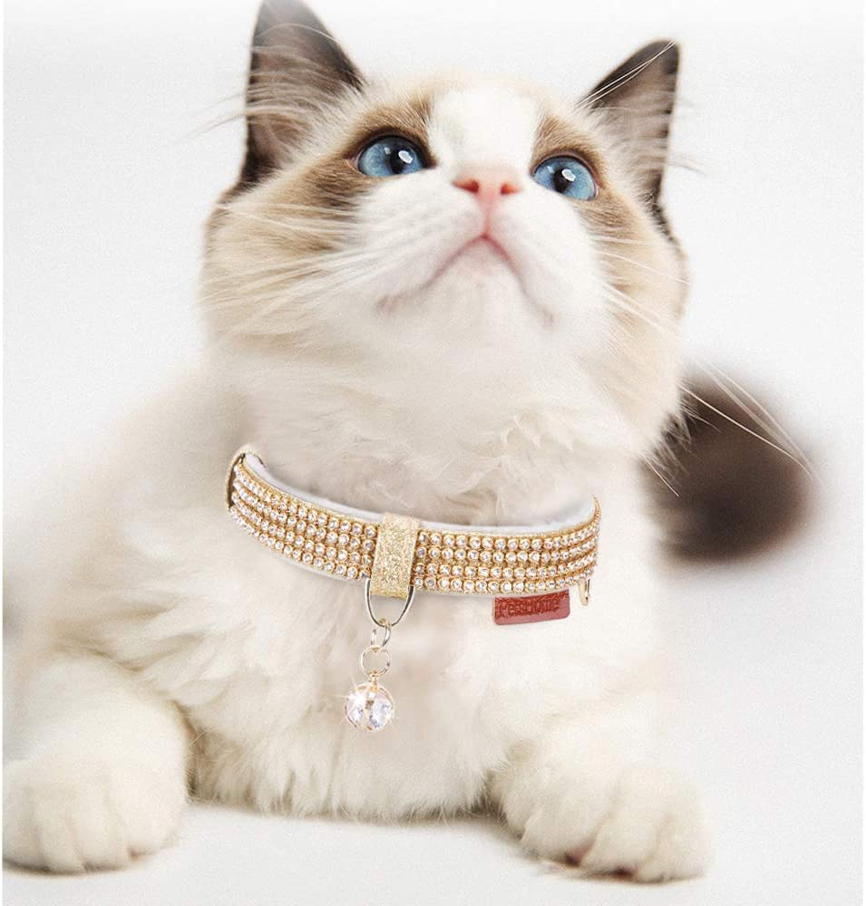 blinged out cat collar