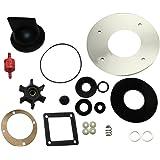 Amazon.com : Raritan Crown Head Replacement Parts Pump Assembly Cd ...