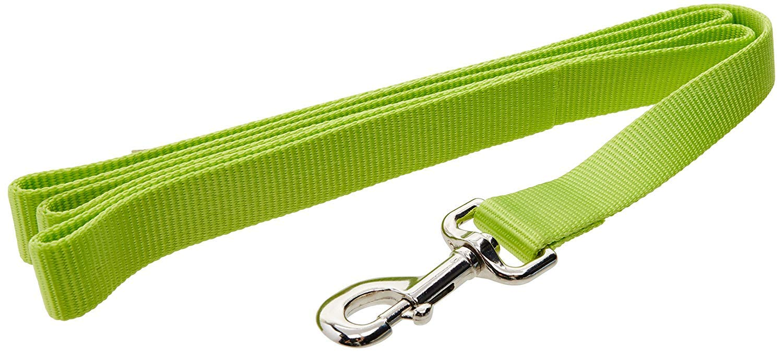 1  Single Ply Nylon 6' Training Dog Leash Lime (Pack of 1)