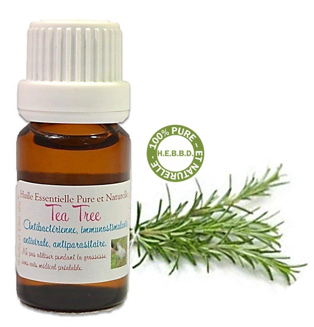 Huile Essentielle HEBBD d' ARBRE à THÉ ou TEA TREE 10ML (Melaleuca alternifolia) - Livraison Gratuite product image