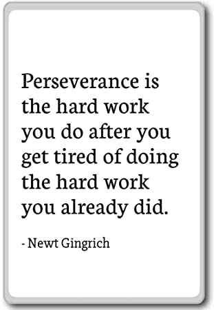 Amazoncom Perseverance Is The Hard Work You Do After Yo Newt