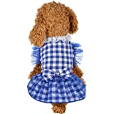 Wakeu Small Dog Girl Dress Pet Puppy Transparent Colorful Vest Shirt Clothes