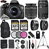 Canon T6i Digital SLR Camera with Canon EF-S 18-55mm f/3.5-5.6 IS STM Lens + Canon EF 75-300mm f/4-5.6 III Lens - LOADED Bundle - All Original Accessories Included - International Version