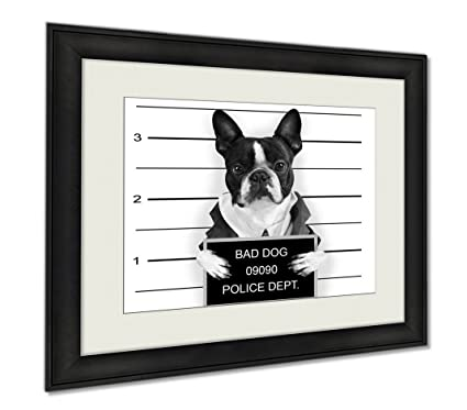 Ashley Framed Prints Bad Dog, Wall Art Home Decoration, Black/White, 26x30