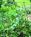 "Green, High heavy-duty A-frame Trellis with net, Plant support, Cucumber, Pumpkin, Tomato ladder Trellis, Garden structure for climbing plants, Height 82"""