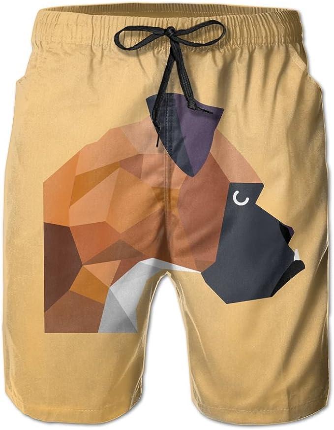 Love Tast LT Orange Mens Swim Trunks Quick Dry Beach Shorts Board Shorts Plus Size Swimwear