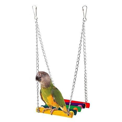 Bello Luna Columpio de pájaro hamaca columpio colorido columpio de ...