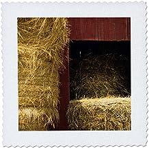 3dRose Missouri, Winona, Hay Bales, Red Barn, Farm - Us26 Ajn0014 - Alison Jones - Quilt Square, 25 by 25-Inch (qs_91508_10)