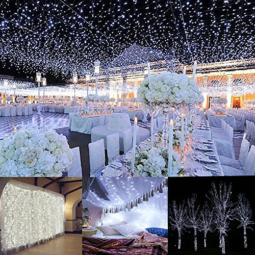 Curtain Lights, AGPTEK 9.8ft x 9.8ft Power Driver LED String Lights with 8 Modes for Christmas/Halloween/Wedding/Party Backdrops - FULL Waterproof & UL Safety Standard - (220 Volt Halloween)