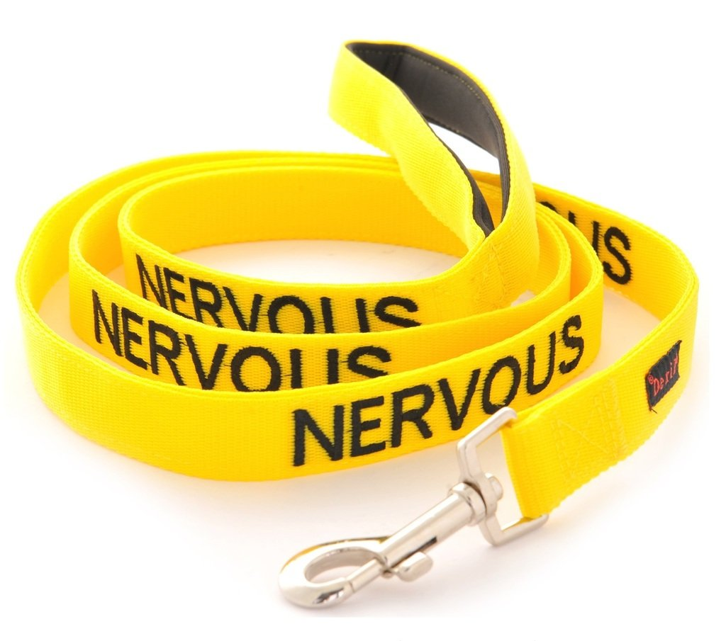 NERVOUS Yellow Color Coded 6 Foot Dog Padded Leash (Give Me Space) PREVENTS Accidents By Warning Others of Your Dog in Advance by Dexil Limited