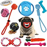 Puppy Toys, Durable Rope Toys Dog Chew Toys Kits for Small Medium Pet Dogs Teething Training, Osla 10 Pack Puppy Dog Chewing Toys Include Rope Bite Tug Toys + Flying Disk + Squeaky Toy + IQ Treat Ball
