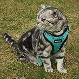 rabbitgoo Cat Harness Escape Proof, Adjustable