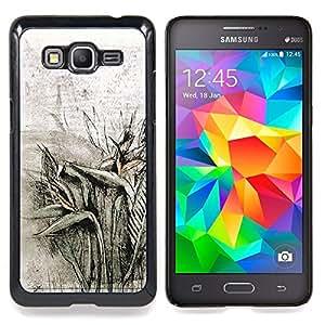 For Samsung Galaxy Grand Prime SM-G530F G530FZ G530Y G530H G530FZ/DS , Plantas de campo Lápiz de dibujo - Diseño Patrón Teléfono Caso Cubierta Case Bumper Duro Protección Case Cover Funda