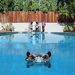 Sparks Hippopotamus cover