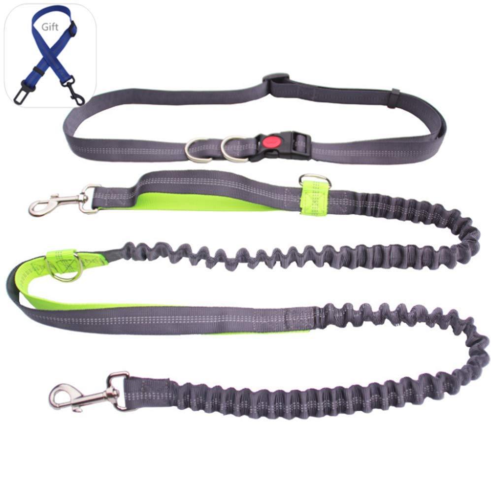 ZPEM Dog Hands Free Leads Walking Leash Adjustable Waist Belt Shock Absorbing Extendible Bungee for Running Walking Training Hiking,Green