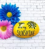 You are my sunshine painted rock