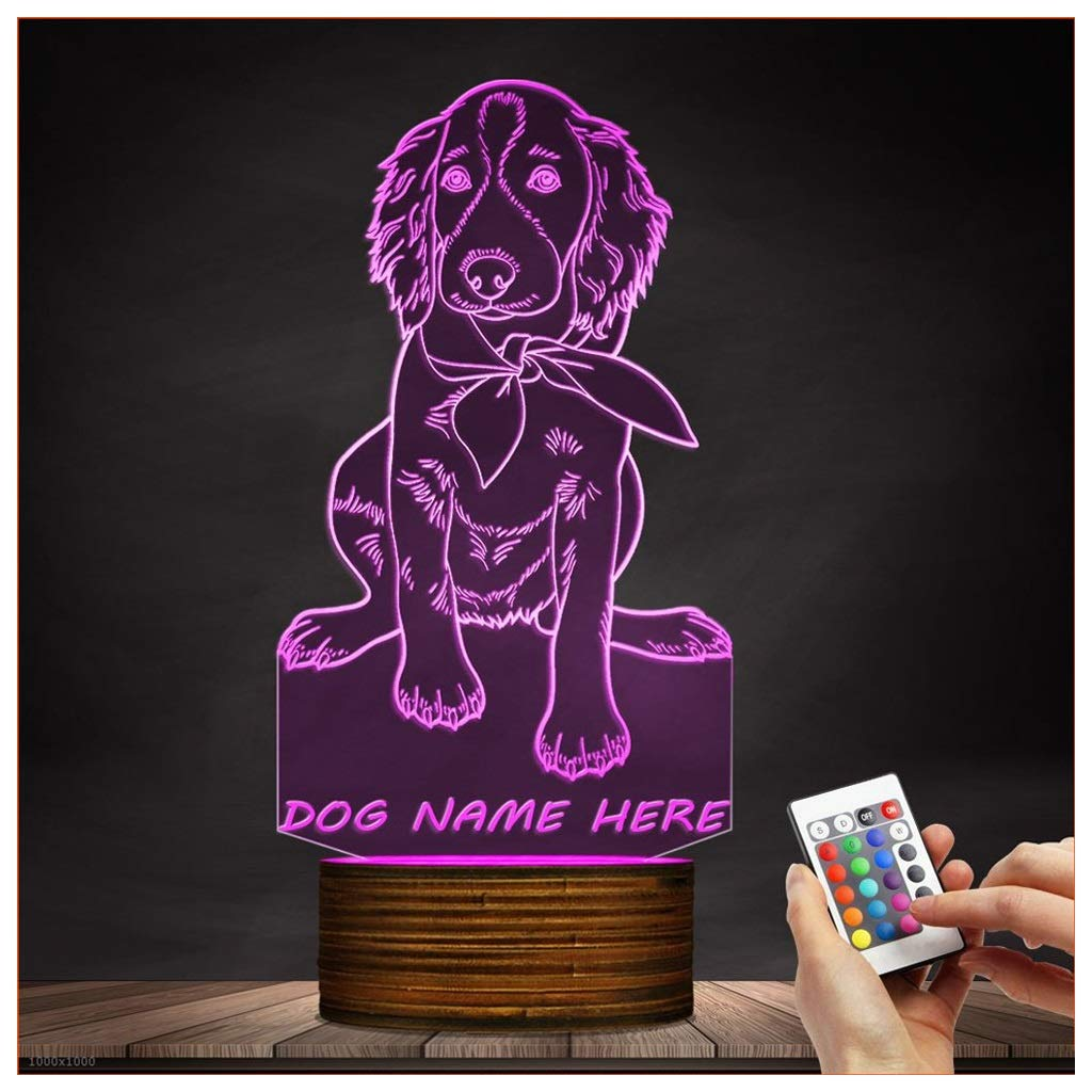 Novelty Lamp, Night Light 3D Child USB Charging Optical Illusion LED Lamp Irish Setter, Color Change 15 Color for Bedroom, Kids Room, Coffee Table, Christmas Decoration and Lover Gift,Ambient Light