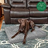 Pet Dog Beds Review and Comparison