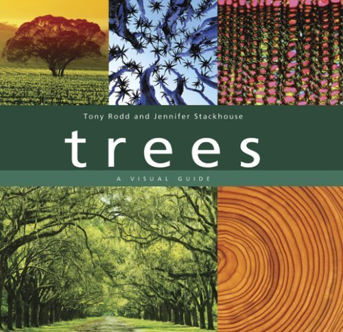 Trees: A Visual Guide by Rodd, Tony, Stackhouse, Jennifer 1st (first) edition [Hardcover(2008)]