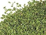 Bulk Herbs: Cilantro Leaf (Organic)