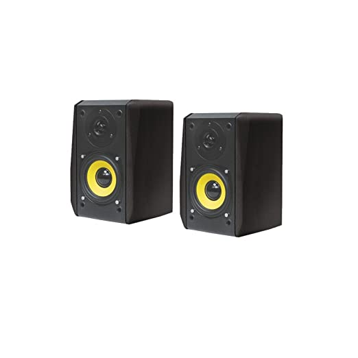 2 opinioni per Dynavox TG-1000M Mini-altoparlante 35 Watt, confezione da 2, colore: Nero