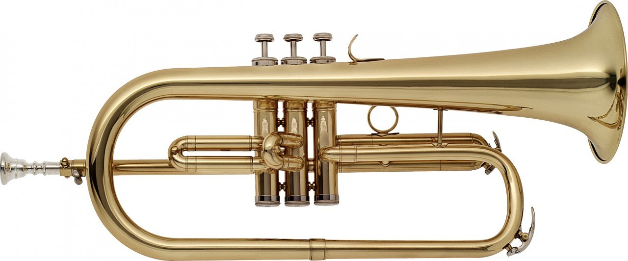 Stagg WS-FH215 Bb Flugelhorn with Case by Stagg